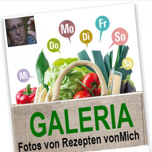 Logo Galerie vonMich